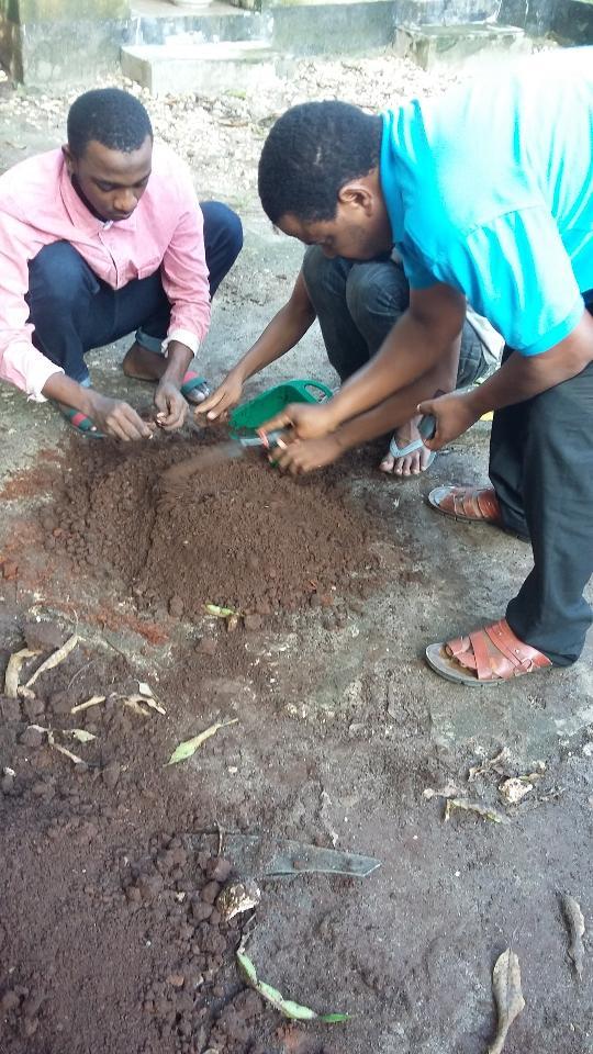 Tanzania youth icon tayi for Soil 4 youth